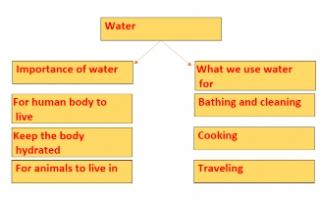 water تقرير انجليزي للصف السادس