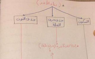 تشجيرات درس بناء الافعال للصف الثامن اعداد احمد عشماوي