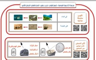 تدريب عملي علوم للصف السابع اعداد بشار احمد الفصل الثاني