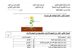 تدريبات علوم محلولة للصف الثاني مدرسة الأكاديمية العربية 2018 2019