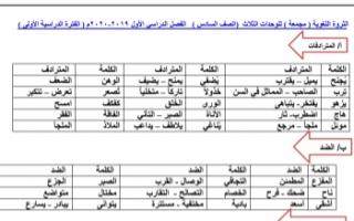 مذكرة الثروة اللغوية عربي للصف السادس الفصل الأول 2019-2020