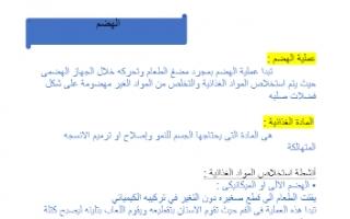 تقرير أحياء حادي عشر الهضم