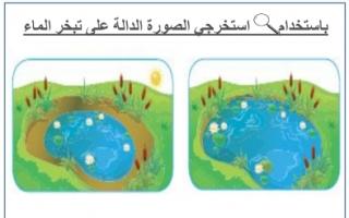 أنشطة علوم درس الماء والجليد وبخار الماء للصف الأول الفصل الأول