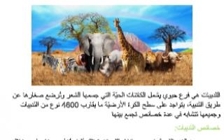 تقرير احياء عاشر الثدييات