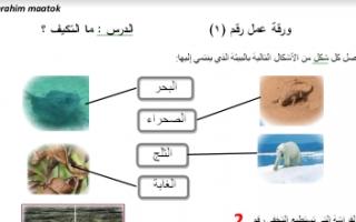 حل أوراق عمل علوم للصف السادس الفصل الأول إعداد أ.ابراهيم معتوق