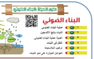 أوراق عمل علوم وحدة البناء الضوئي للصف السابع مدرسة احمد الفارسي