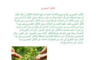 تقرير أحياء التكاثر الخضري للصف الحادي عشر الفصل الاول