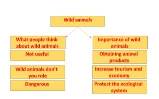 wild animals تقرير للصف الحادي عشر