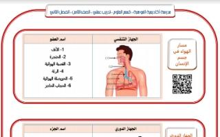 تدريب عملي علوم للصف الثامن اعداد بشار احمد الفصل الثاني