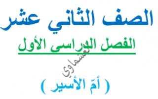 مذكرة أم الأسير لغة عربية للصف الثاني عشر اعداد العشماوي