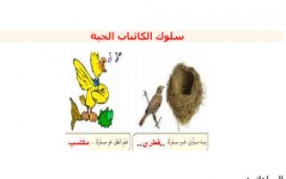 تقرير سلوك الكائنات الحية مادة العلوم للصف السادس الفصل الأول