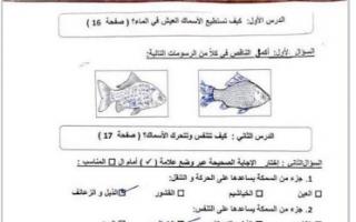 أوراق عمل علوم محلولة الصف الثالث الفصل الأول