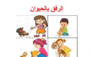 تقريرالرفق بالحيوان تربية إسلامية للصف السابع