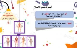 تقرير علوم للصف الرابع أجهزة جسم الإنسان