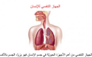 تقرير احياء حادي عشر الجهاز التنفسي للإنسان