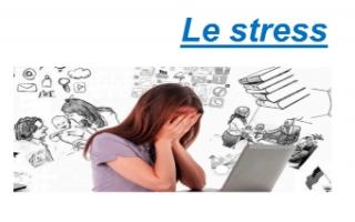 تقرير Le stress فرنسي للصف الثاني عشر أدبي الفصل الثاني