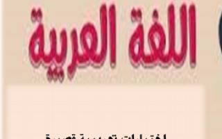 اختبارات تجريبية للغة العربية للصف السابع للمعلم أحمد صديق
